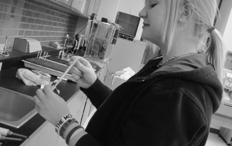 Sophomore Julie Curtis prepares to isolate DNA for the upcoming STEM Expo April 2.