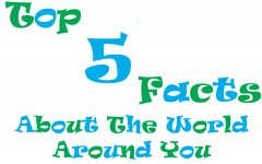 Top 5 Facts about the World Around You! (Super Bowl Edition)