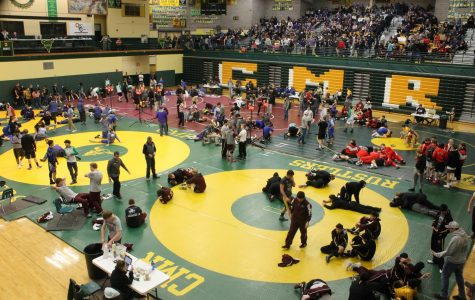 Statewide wrestlers