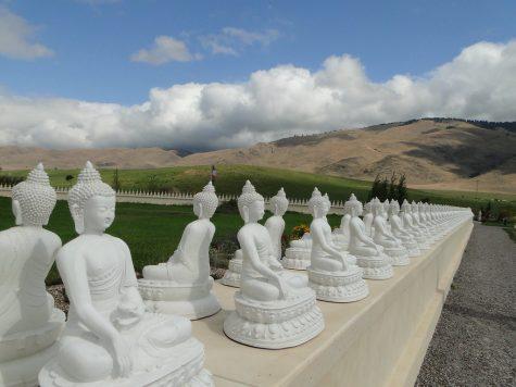 Stampede Speaks S1E2: Garden of 1000 Buddhas