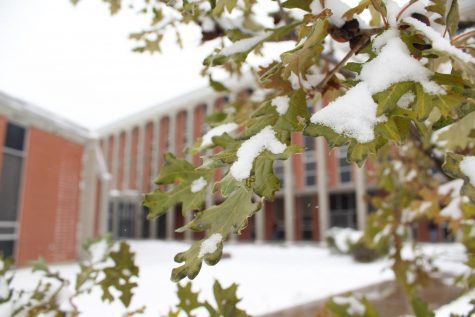 Snow encompasses CMR campus