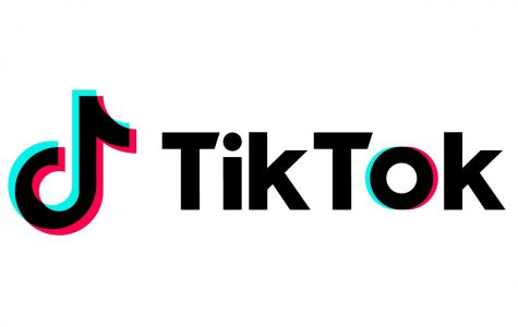 The TikTok accounts that will get you through quarantine